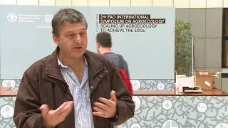 Download Paulo Petersen: sementes localmente adaptadas são vitais para a agroeocologia Video