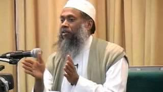Download Bangla Tafseer 095 Surah At Tin by Sheikh Abdul Qaiyum Video