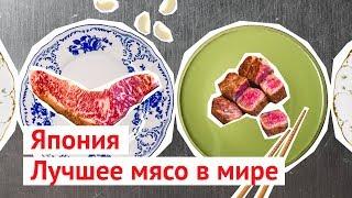 Download Самое дорогое в мире мясо: японская мраморная говядина Video
