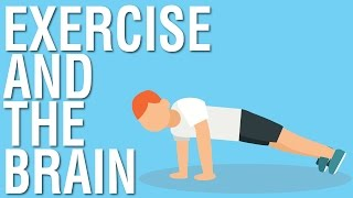 Download EXERCISE AND THE BRAIN - SPARK BY JOHN RATEY ANIMATED BOOK SUMMARY Video