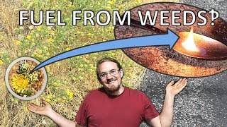 Download Extracting Jet Fuel From GumWeed Video