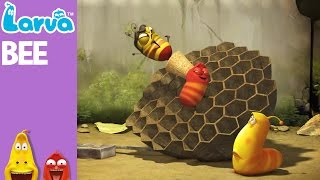 Download Bee - Mini Series from Animation LARVA Video