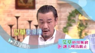 Download (GTV健康NO.1)2016.06.08 端午艾草功效強?!安胎活血又袪病 Video