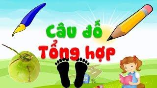 Download Câu đố vui dành cho trẻ mầm non học về con vật đồ vật hoa quả giúp bé thông minh| ECE 2 Video