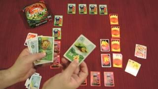 Download SYLVION Card Game Quick Walkthrough w/ Doron Video