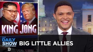 Download Big Little Allies | The Daily Show Video