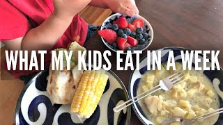 Download What My KIDS Eat in a Week Part 2 Video