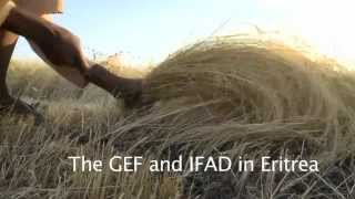 Download Eritrea: IFAD / GEF Partnership Video