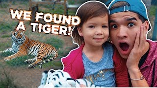 Download WE FOUND A TIGER! Video