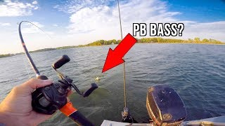 Download Catch and Cook Challenge!!! - Caught My PB Bass? Video