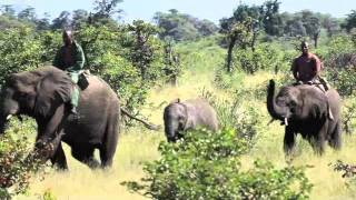 Download Africa Overland - Botswana #AfricaOverland Video