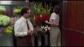 Download Big Night (1996) | Allison Janney and Tony Shalhoub Video