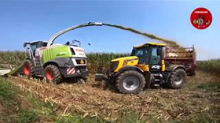 Download Chopping Corn Silage near Eaton Ohio - August 2018 Video