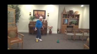 Download One of the Best All-Around Balance Exercise For Seniors Video