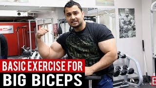 Download Add inches to your ARMS with ″ONE SIMPLE EXERCISE″ (Hindi/Punjabi) Video