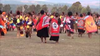 Download HRH Principal Princess Sikhanyiso Solo Reed Dance. Video