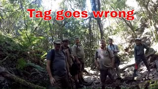 Download Madmongoose African Safari - Fun while hiking Video