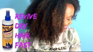 Download Review || BEST Natural Hair Detangler || Mane N' Tail Video