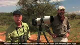 Download Nature's Best Photographer of the Year: Art Wolfe Video