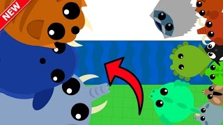 Download MOPE.IO 3 NEW ANIMALS vs 1000 ANIMALS!! // Blue Whale Trolling (Mope.io Update) Video