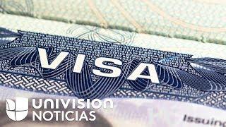 Download Seguridad Nacional tiene en la mira a los inmigrantes con visa expirada de turista o estudiante Video