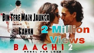 Download Bin Tere Main Jaunga Kanha    Baaghi 2 Song    Ash Vblog    Video