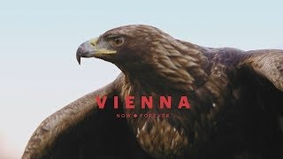 Download Vienna from an eagle's eye view (long) Video