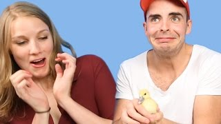 Download People With A Fear Of Birds Get Surprised With Ducklings Video