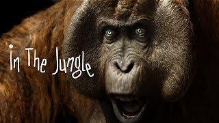Download 🔊 In The Jungle - Vigiland x Deorro Type Tropical Summer Melbourne Bounce EDM Pop Beat Video