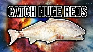 Download Surf Fishing Guide for Bull Red Drum | How To Catch Redfish - Surf fishing Tips for Redfish Video
