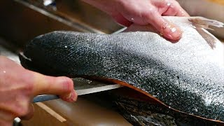 Download Japanese Food - FISH CUTTING SKILLS Salmon, Mackerel, Squid Sushi Kyoto Seafood Japan Video