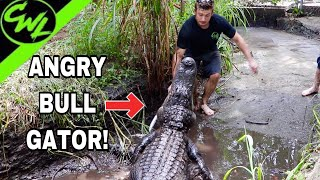 Download Trying to clean BULL GATOR PIT!!! Video