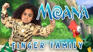 Download The Greatest Finger Family Song | Moana | Nursery Rhymes | WigglePop | Family Friendly | Kids Songs Video