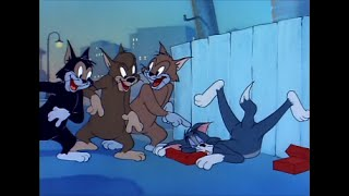 Download Tom and Jerry, 58 Episode - Sleepy-Time Tom (1951) Video