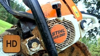 Download What Chainsaw Is Right For You? Video