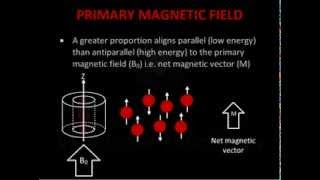 Download Introduction to MRI Physics Video