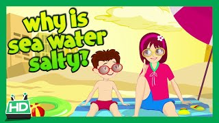 Download WHY IS SEA WATER SALTY? Video