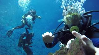Download Chinhoyi Zimbabwe Cave Dive Video