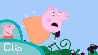 Download Peppa Pig - The Blackberry Bush (clip) Video