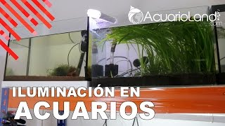 Download Iluminación en acuarios || ACUARIOLAND Video