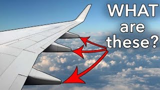 Download ″Pods″ under the wing? What are they? Video