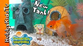 Download HobbyFish + SpongeBob in NEW TANK! Bikini Bottom Fish Tank by HobbyKidsTV Video