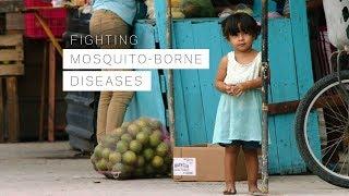 Download Fighting Mosquito-borne Diseases Video