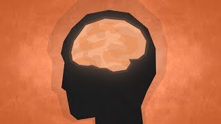 Download Top 10 Facts - Psychology Video