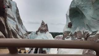 Download Animated Bird Figure Returns to Expedition Everest at Disney's Animal Kingdom Theme Park Video
