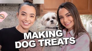 Download Making Dog Treats - Merrell Twins Live Video