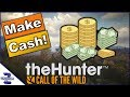 Download How To Make Cash as Beginner Call of the Wild Video