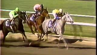 Download Great Thoroughbred Races Volume 2 Video