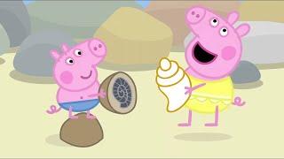 Download Peppa Pig Full Episodes | Rock Pools | Cartoons for Children Video