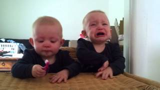 Download Twins fighting over a toothbrush Video